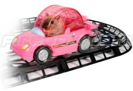 coche hamster