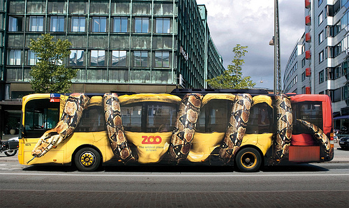 serpiente bus